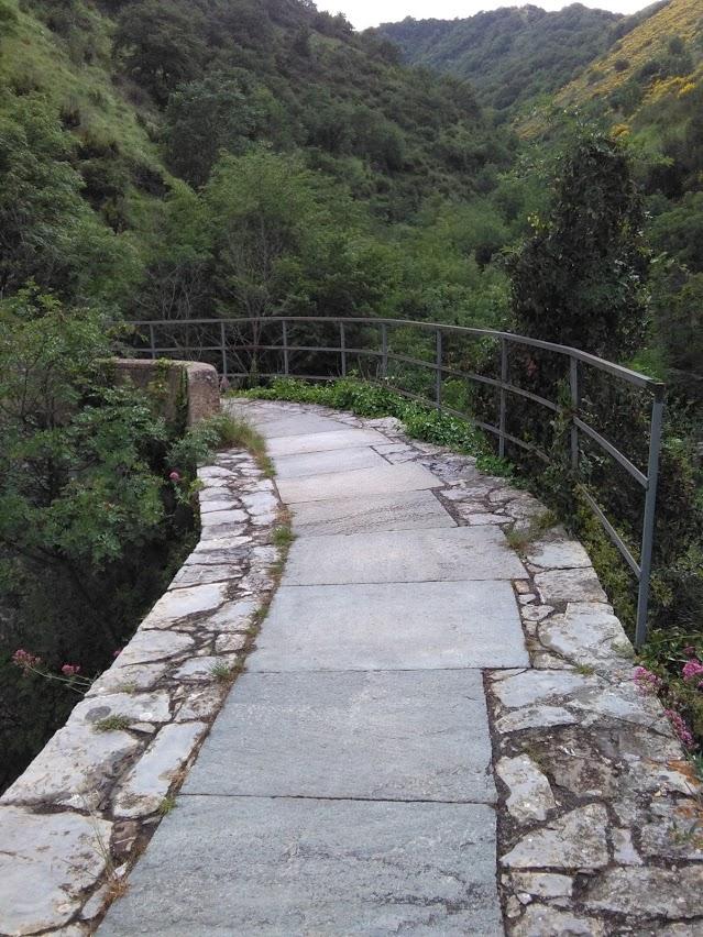 ponte Fossato Cicala