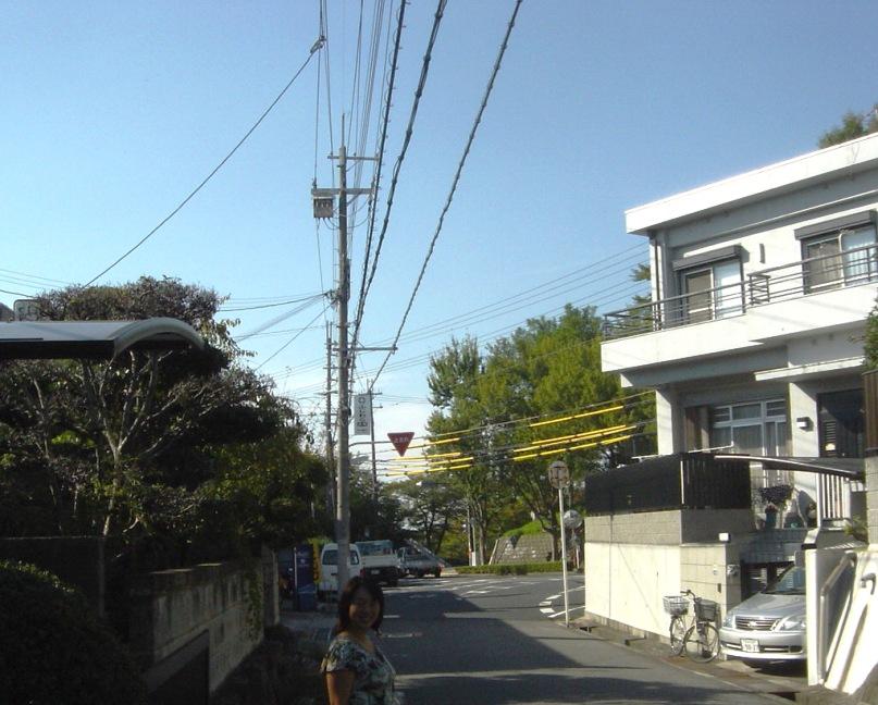 elettricisti giapponesi